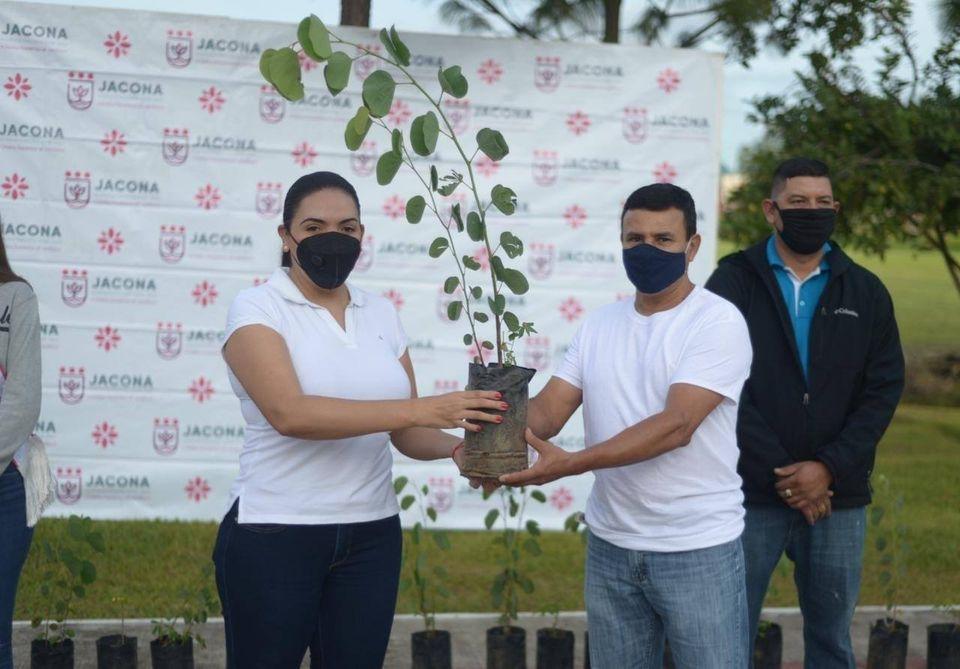 Encabezó Adriana Campos los trabajos de reforestación en Jacona