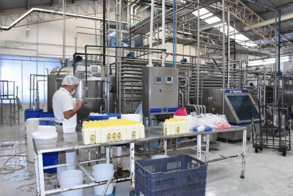 Recupera Michoacán 3 mil 526 empleos en agosto