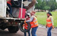 Tres días de limpieza y descacharrización en Ario de Rayón