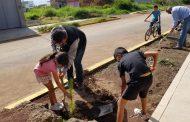 Comprometidos vecinos y ayuntamiento en reforestación del Camino al Jericó.