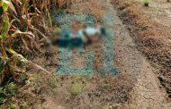 Identifican a la joven asesinada hallada en sembradíos de Chaparaco
