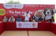Aplicarán en Zamora Reglamento se Protección Animal