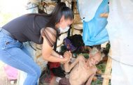 Apoya DIF Zamora a adulto mayor abandonado
