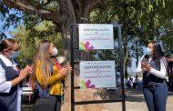 Jacona logra posicionarse entre los 10 municipios de Michoacán en contar con Certificación de Comunidad Promotora de Salud