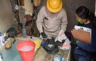 Mosco del dengue no se muere con el frio, inverna