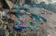 Hallan a dos asesinados en un narcocampamento abanado en Zamora
