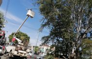 Realizan rehabilitación integral en arboledas, Zamora