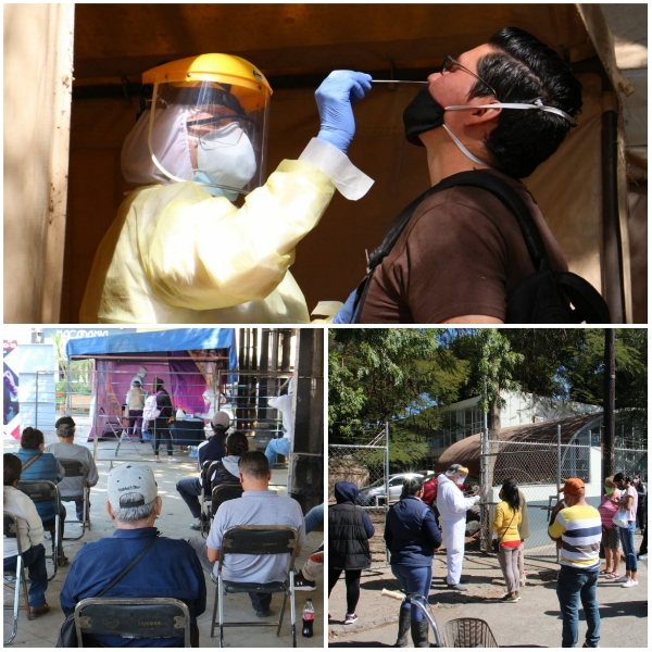 Se realizan más de 500 pruebas de COVID diarias en Zamora