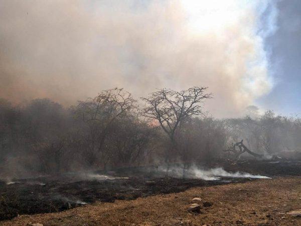 Incrementa la quema de pastizales en Tangancícuaro