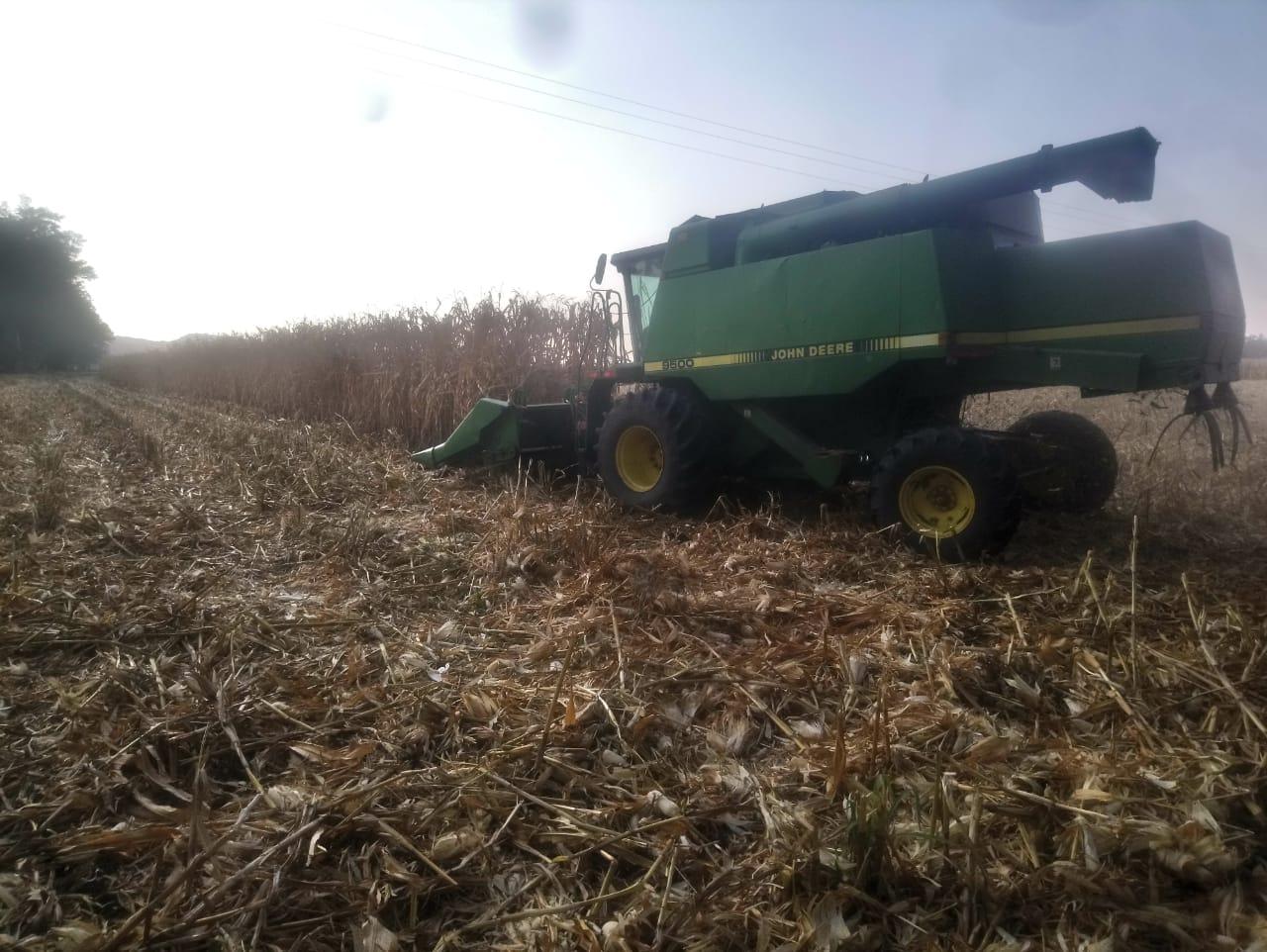Productores agrícolas están descobijados con desaparición de seguro