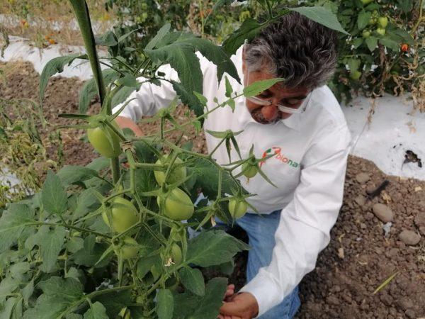 Crecen los productores que apuestan a generar agricultura sustentable