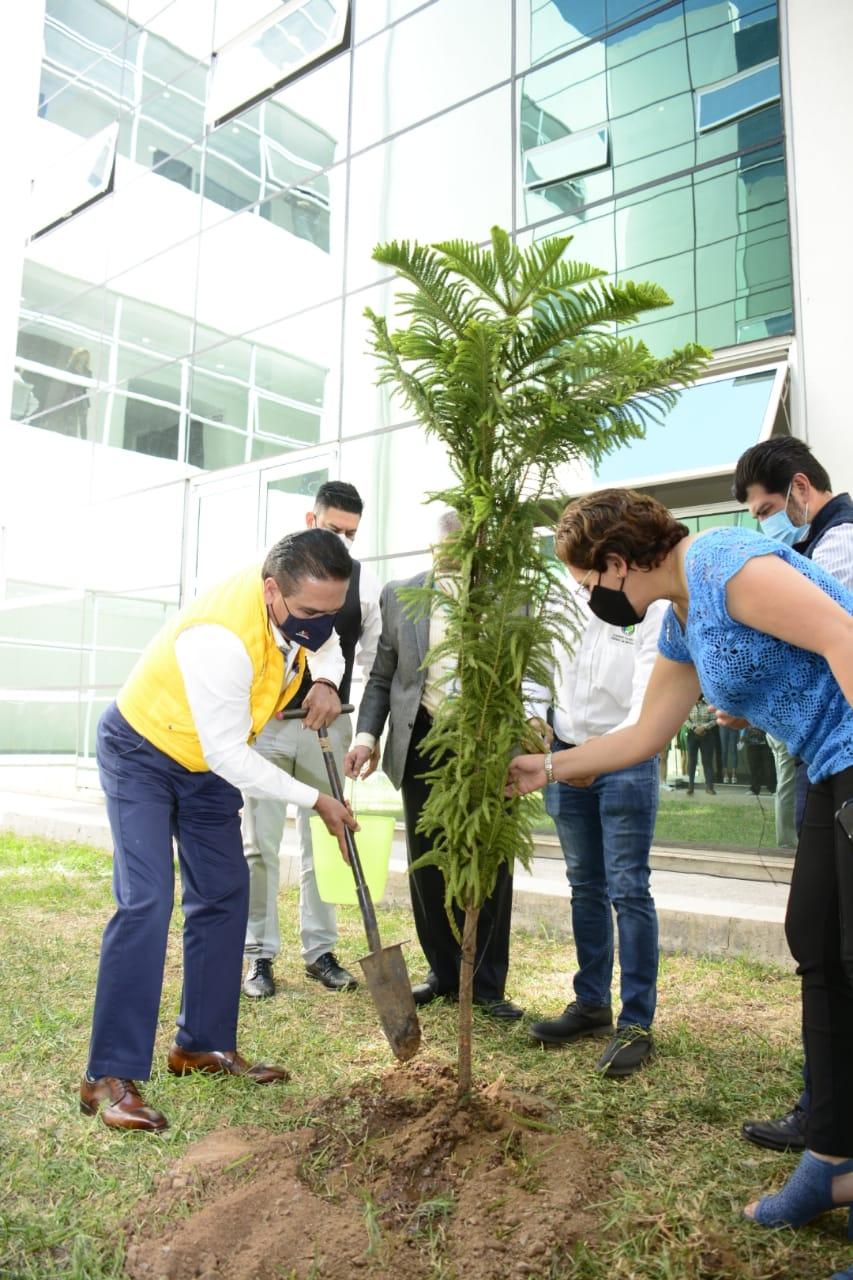 Planta Gobernador árboles en memoria de quienes perdieron la vida por COVID-19