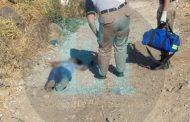 A balazos matan a un hombre en la Luis Donaldo Colosio de Zamora