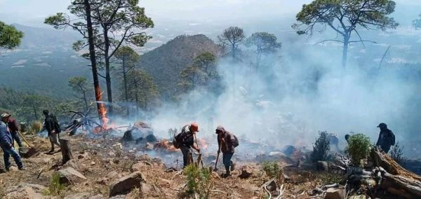 Continúa activo el incendio en el Cerro Grande de Patamban