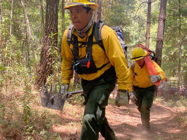 Coordinan fuerzas contra incendio en cerro de Patamban; mañana enviarán helicópteros