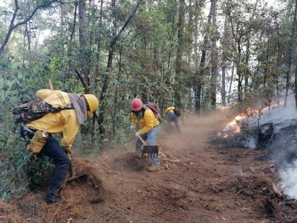 Controlados, los incendios en Áporo-Senguio y Los Reyes-Tangancícuaro