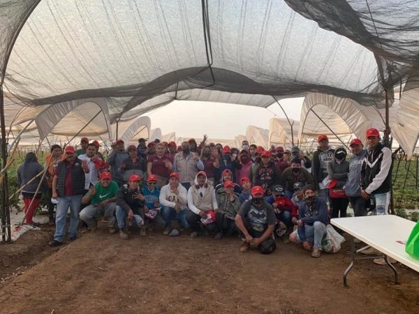 Potencializaremos el agro de Jacona: Isidoro Mosqueda