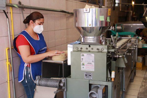 Tortilleros siguen con el problema de aumento en costo de maíz