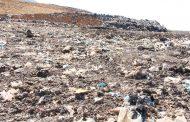 Controlan tiradero de desperdicios de mango a cielo abierto en Jacona