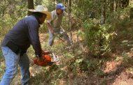 Concluye oficialmente temporada 2021 de incendios forestales