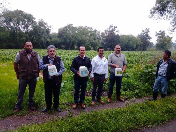 Agricultura Sustentable recuperó la fertilidad de los suelos agrícolas en Michoacán: Sedrua