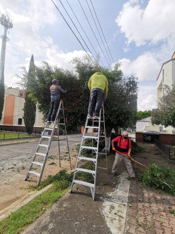 Realizan mantenimiento a parques y jardines del municipio