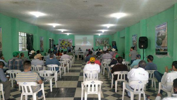 Promoverá Ayuntamiento la agricultura sustentable en el campo jaconense