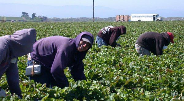 Gobierno de Jacona dará especial atención a través de la Dirección del Migrante.