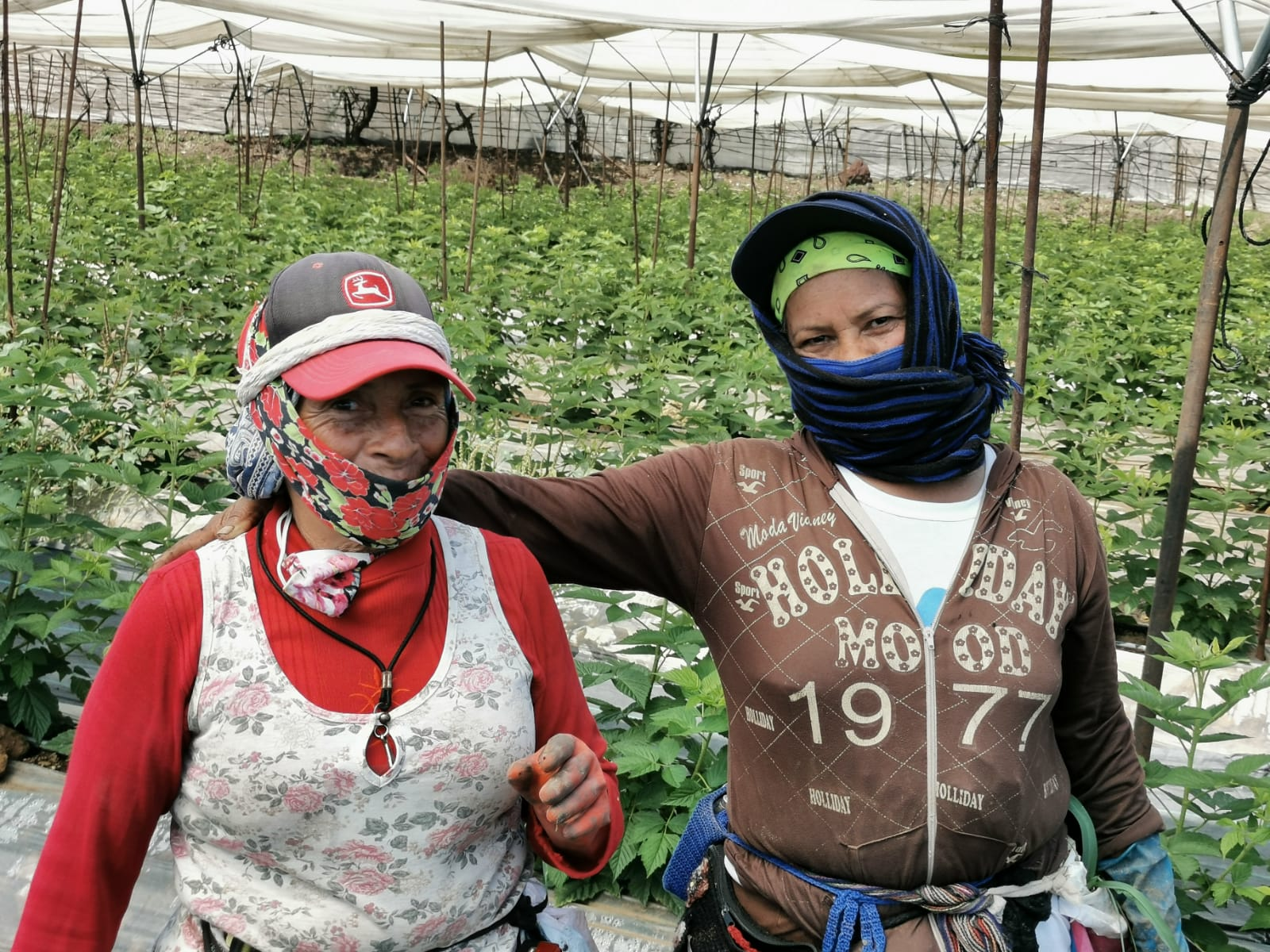Gobierno de Zamora reconocerá labor de las mujeres rurales