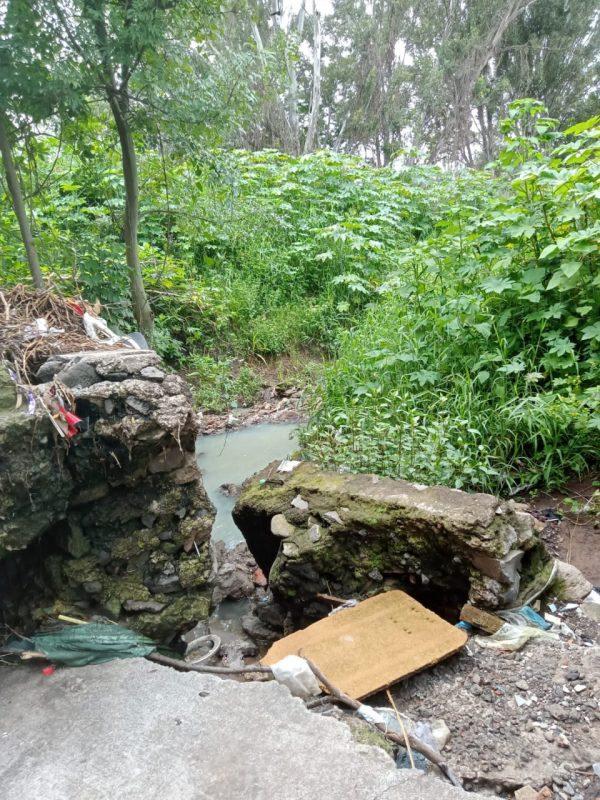 SAPAJ exhorta a la ciudadanía a no tirar basura en vía pública
