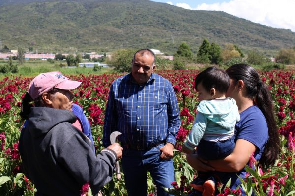 Alcalde de Jacona impulsa proyecto de emprendedoras