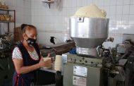 Tortilleros consideran un hecho el incremento al kilo de tortillas