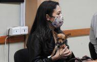 Insisten en crear un reglamento de bienestar animal en Jacona